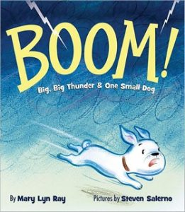 Boom! by Mary Lyn Ray