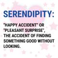 Serendipitous CLCD Enterprise Searches