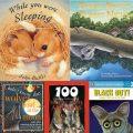 STEM Reading List: Nocturnal Animals